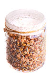 Top View of Sprouting Lentils Growing in a Jar Stock Image