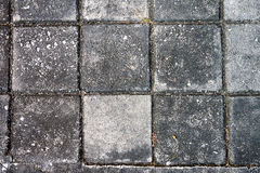 Top view Square brick on pavement Royalty Free Stock Photography