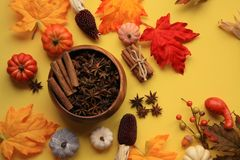 Pumpkin Spice Fakk top view with star anise and cinnamon. Top view with star Anise bowl and cinnamon sticks.  There is a  bundle of cinnamon sticks tired and a royalty free stock photo