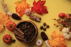 Pumpkin Spice top view with star anise and cinnamon. Top view with star Anise bowl and cinnamon sticks.  There is a  bundle of cinnamon sticks tired and a few royalty free stock image