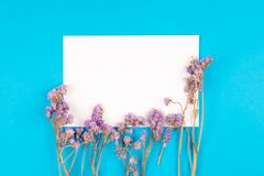 Top view of statice flower with white paper card on blue background stock photo