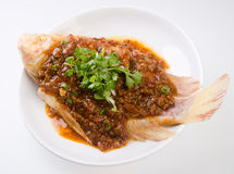 Top View Steamed Fish With Chili Soy Sauce Royalty Free Stock Photos