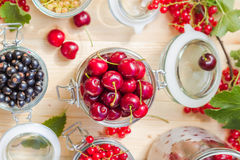 Top view summer fruits prepared Preserving Royalty Free Stock Photo