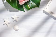 Free Top View Summer Monstera Leaf And Shell And Star Fish On White Wood Table With Sunlight Shadow.summer Vacation Royalty Free Stock Photography - 148282787