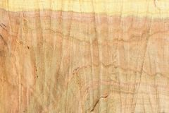 Top view of the surface of the fresh stump with annual rings closeup. For use as background. High resolution photo. Full depth of field stock photos