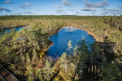 Top view of swamp in Estonia. Raised bog lakes in early springs. royalty free stock photos