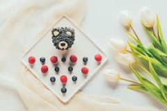 Top view of sweet tasty muffin in shape of bear, fresh raspberries and tulip flowers Royalty Free Stock Photo
