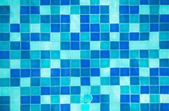 Top view swimming pool. Top view of swimming pool Royalty Free Stock Images