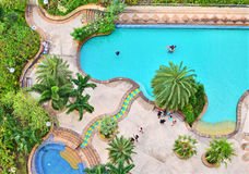 Top view of swimming pool Royalty Free Stock Images