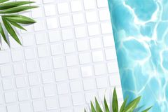 Top view of swimming pool scene. With white tile and green palm leaves in 3d illustration Royalty Free Stock Photography