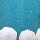 Top view of swimming pool Royalty Free Stock Photos