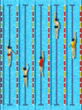 Top View Swimming Pool With Athlete Swimmers Vector Stock Photos