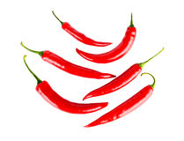 Top view of symetrical red peppers  white background. Top view symetrical composition chilli red peppers  on white background Royalty Free Stock Image