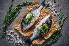 Top view of tasty dorado fish with vegetables and spices. Raw dorado fish and ingredients for cooking on rustic wooden board and black background, top view Royalty Free Stock Images