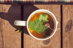 Top view of tea with currant leaf in white cup. Horizintal image.  Royalty Free Stock Image