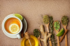 Top view of tea herbs, raw ginger and lime. On jute Royalty Free Stock Image