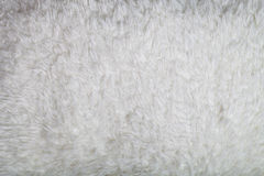 Top view on texture of white artificial fur for background Royalty Free Stock Images