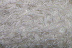 Top view on texture of white artificial fur for background Stock Image