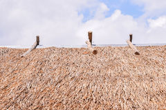 Top view of thatched roof ,Roof from  Imperata cylindrica Beauv Stock Images