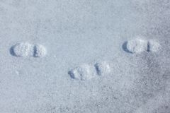 Top view on three footprints in the icy snow stock photos