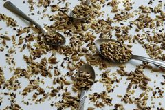 Top view of toasted mix of seeds - sunflower, lin and sesame seeds. Small amount- many proteins for healthy eating stock photos
