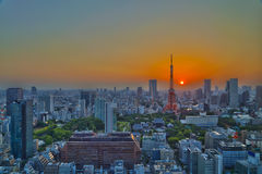 Top view of Tokyo cityscape at sunset Stock Images