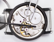 Top view of tools on open repaired watch close up Royalty Free Stock Image