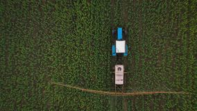 Top view of tractor treats agricultural plants on the field. Tractor treats agricultural plants on the field, top view from height stock video footage