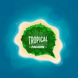 Top view of a tropical island in the ocean Stock Image
