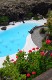 Top view for tropical swimming pool Royalty Free Stock Photos