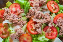 Top view tuna salad with red tomato, fresh lettuce. Hight vitamins and low fat for loose weight. Heathy food concept