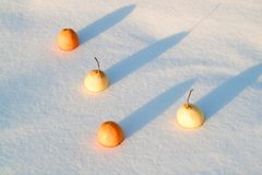 Top view of two mandarins and two pears adhering to the snow. In the winter Royalty Free Stock Photography