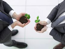 Top view.two smiling businessmen with a green sprout. The concept of cooperation royalty free stock photos