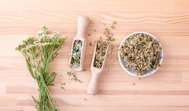 Fresh and dried yarrow. Top view of two spoons of fresh and dried flowers and leaves of yarrow with a wooden background Stock Photography