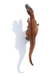 Top view tyrannosaurus with shadow on white background. Top view tyrannosaurus with shadow on a white background Stock Photo