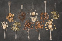 Assorted nuts in spoons Royalty Free Stock Photos