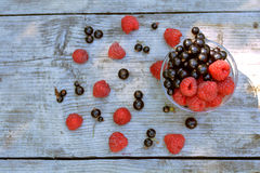 Top view of vase full of red raspberry and blackcurrant, scattered berries grey background. Top view of vase full of red raspberry and blackcurrant, scattered Royalty Free Stock Image