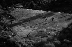 Top view of a village cricket pitch with running players with shadows in black and white royalty free stock photo