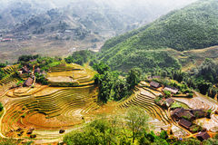 Top view of village houses and rice terraces filled with water. At highlands of Sapa District, Lao Cai Province, Vietnam. Sa Pa is a popular tourist destination Royalty Free Stock Image