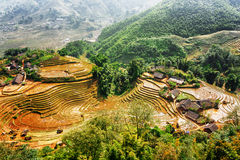 Top view of village houses and terraced rice fields, Vietnam. Top view of village houses and terraced rice fields of Sapa in autumn. Lao Cai Province, Vietnam Stock Image