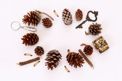 Top view of vintage objects and pine cones Stock Image