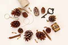 Top view of vintage objects and pine cones Stock Photos