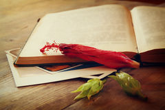 Top view of vintage open book and dry red flower. vintage filtered image Royalty Free Stock Photos