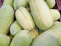 Top view of wax gourd as a background for sale in the market. Abstract background, use for cooking Winter Melon, White Gourd, Winter Gourd, Ash Gourd,Benincasa stock images