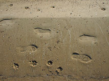 Top view of wet sand on the beach with tracks Royalty Free Stock Image