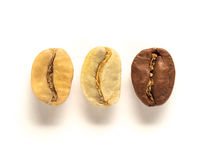 Top view of white, green and brown coffee bean. Mix of white left , green center and brown right coffee bean on white background. Top view or flat lay. Extreme Royalty Free Stock Images