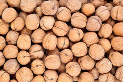 Whole walnuts as background Royalty Free Stock Images