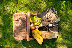 Top view of wicker picnic basket with fruits, wine bottle and plaid on green lawn stock photography