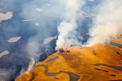 Top view of wildfire. Aerial view of wildfire on meadow on height of the flight of the bird stock photo