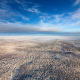 Top view the winter forest Royalty Free Stock Image